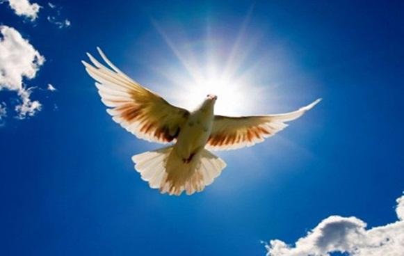 Paz e luz