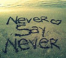 Nunca diga nunca